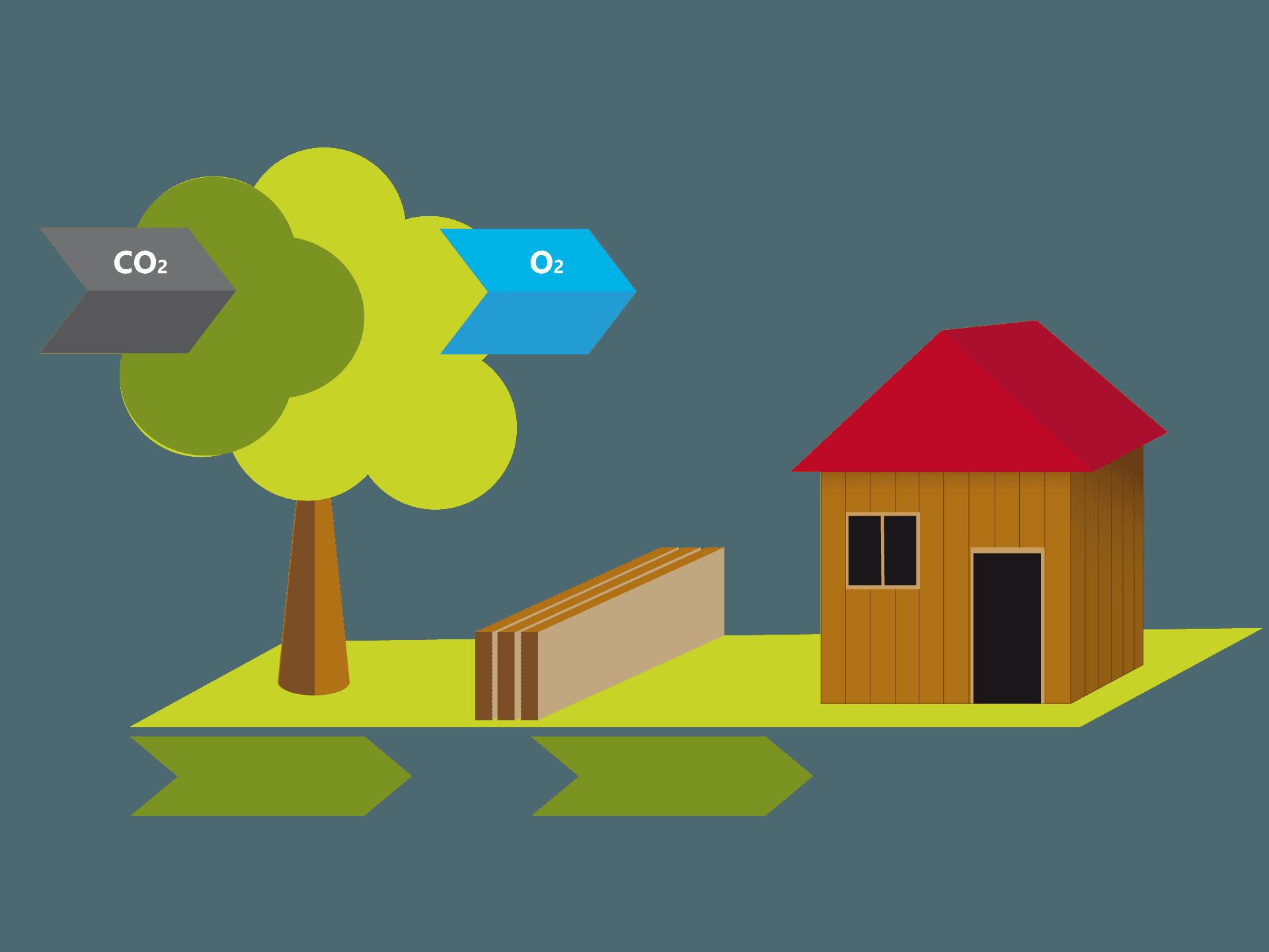 Ökologisch bauen mit der Holzmauer – ein massiv gebautes Holzhaus ist bis zu 100 Jahre klimaneutral